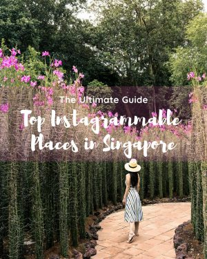 Instagram Worthy Spots in Singapore