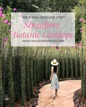 A Simple Guide to the Singapore Botanic Gardens